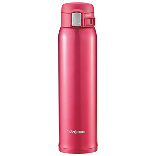 Tiger Insulated Travel Mug 20 Ounce Silver Micromally